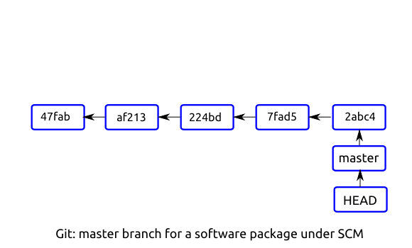 Git: master branch for a software package under SCM