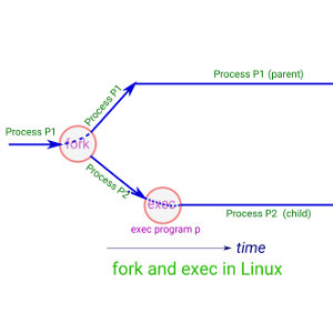 Fork and exec