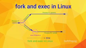 fork and exec in Linux
